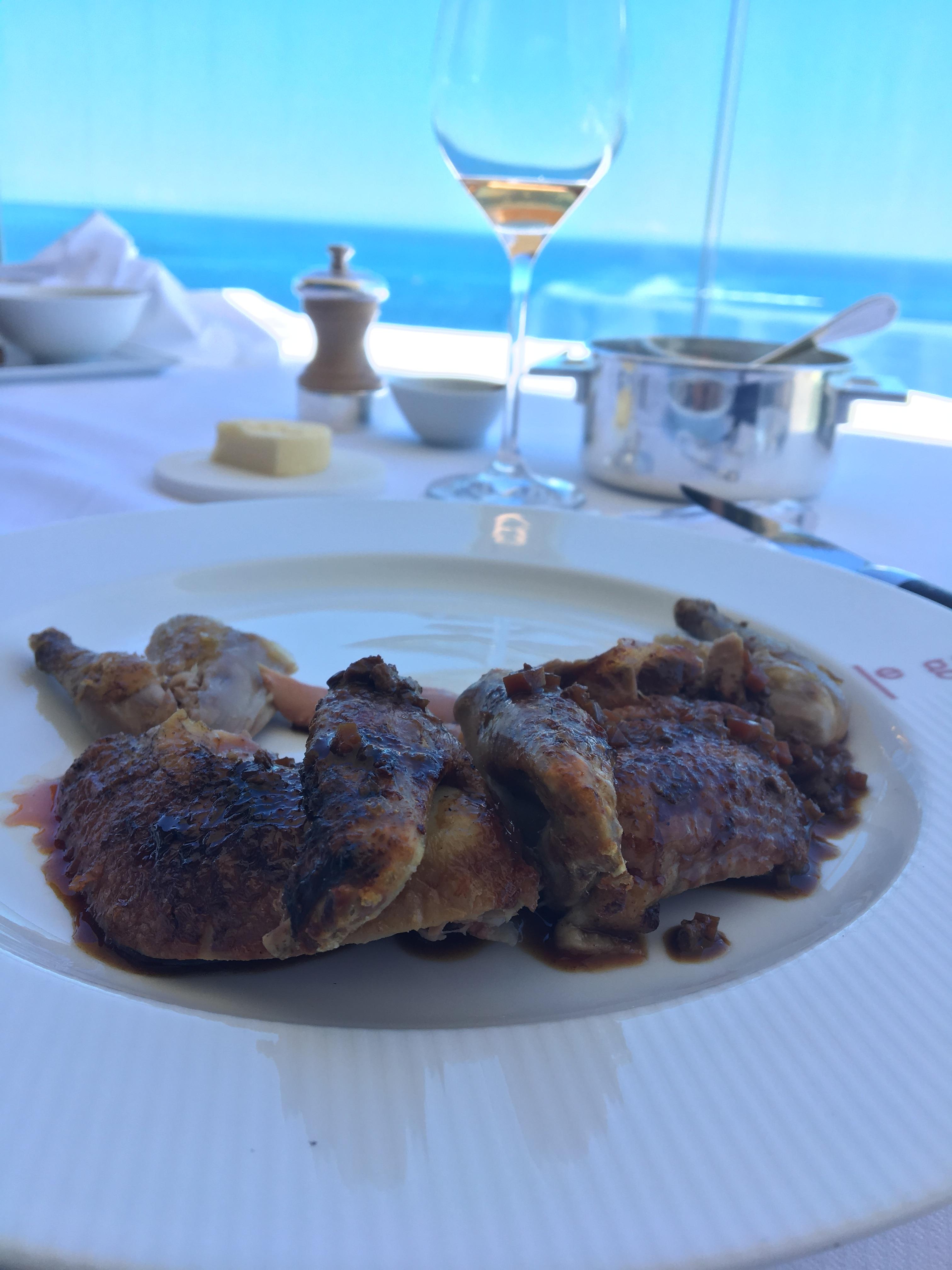 Pigeon_Monaco.JPG